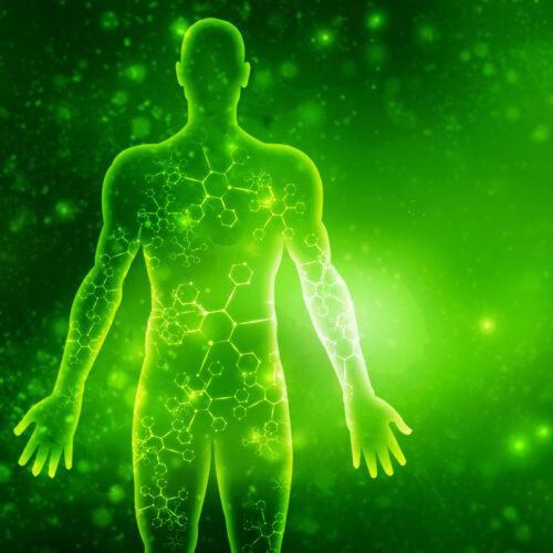 Energy System Detox - Light Transmission