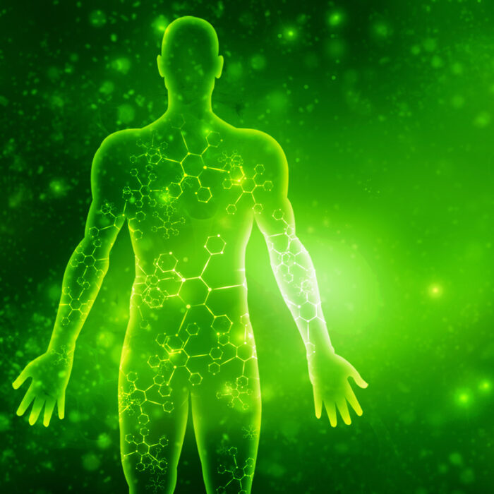 Energy System Detox - Light Transmission