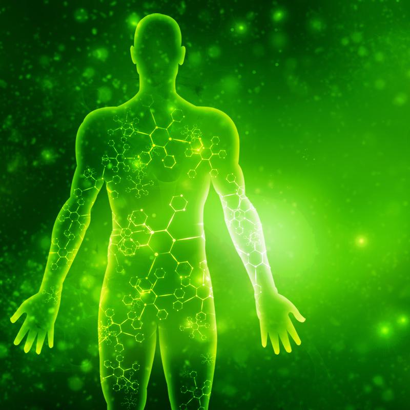 Energy System Detox