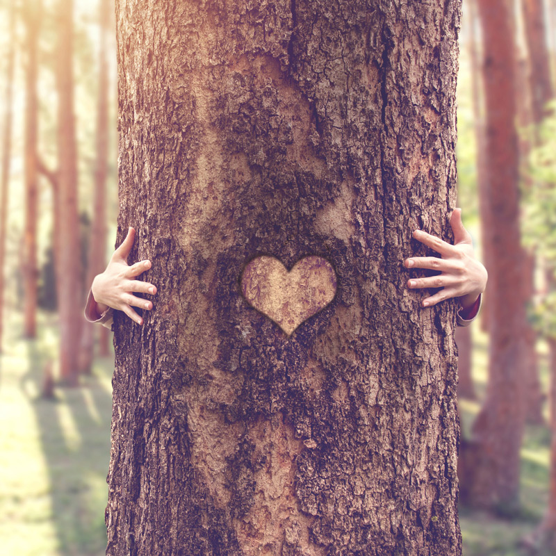 Heart of the Earth Mother Attunement